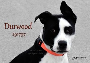 Durwood